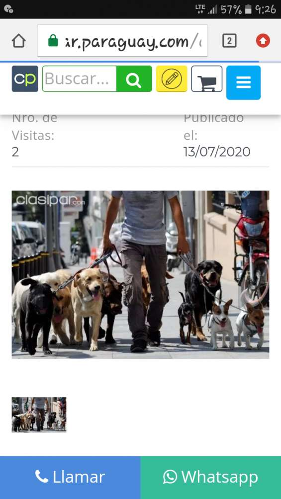 Paseador de perros.